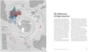 Jak albatros oblétá Antarktidu
